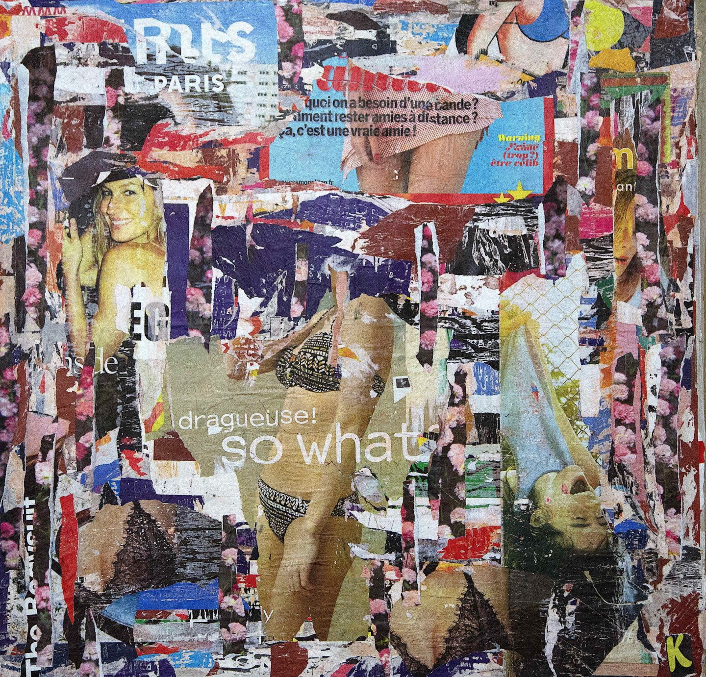 Dominique Kerkhove (DomKcollages) - Free,... so what !