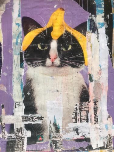 Ceci n'est pas un chat avec une banane sur la tête !